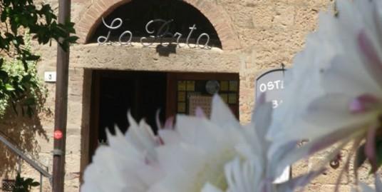 fioritura-cactus